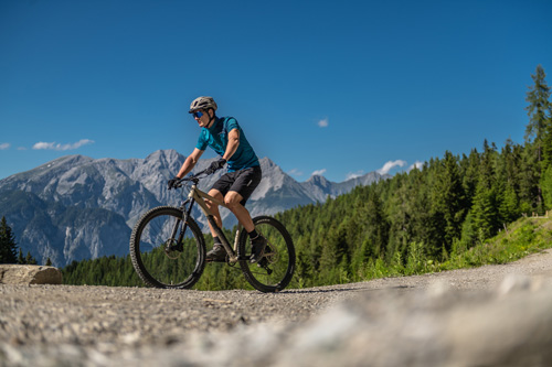 Hardtail_Cube_2021_01_03989_low_500x333